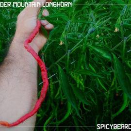 Peperoncino Thunder Mountain Longhorn - Capsicum Annuum