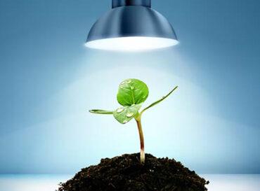 illuminazione-coltivazione-indoor