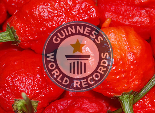 Carolina Reaper - Guinness World Records - peperoncino più piccante del mondo