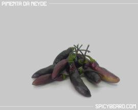 Peperoncino piccante Pimenta da Neyde - Capsicum Chinense