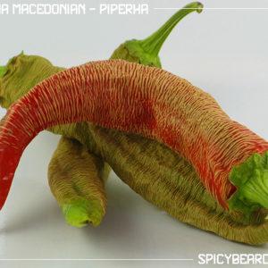 Peperoncino Rezha Macedonian - Vezena Piperka - Capsicum Annuum