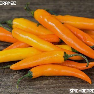 Peperoncino Thai Orange - Capsicum Annuum